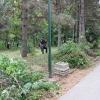 jkp-gorica-nis-uredjenje-bubnja-09-08